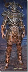 Nord Templar Veteran - Male Front