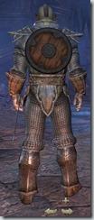 Orc Dragonknight Novice - Male Back