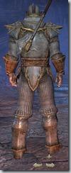 Orc Templar Novice - Male Back