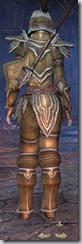 Orc Templar Veteran - Female Back