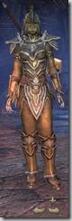 Orc Templar Veteran - Female Front