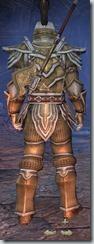 Orc Templar Veteran - Male Back