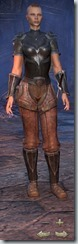 Redguard Dragonknight Novice - Female Front