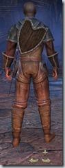 Redguard Dragonknight Novice - Male Back