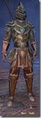Redguard Templar Veteran - Male Front