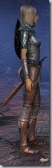 eso-high-elf-dragonknight-novice-armor-2