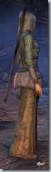 eso-high-elf-sorcerer-novice-armor-2