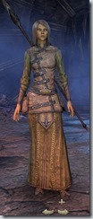 eso-high-elf-sorcerer-novice-armor