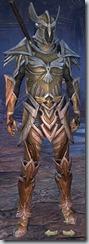 eso-high-elf-templar-veteran-armor-male