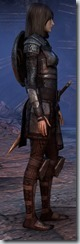 eso-imperial-dragonknight-novice-armor-2