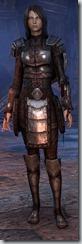 eso-imperial-dragonknight-novice-armor