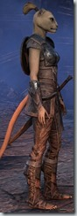 eso-khajiit-dragonknight-novice-armor-female-2