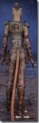 eso-khajiit-nightblade-novice-armor-female-3