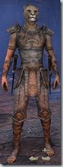 eso-khajiit-nightblade-novice-armor