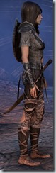 eso-wood-elf-dragonknight-novice-armor-2 - Copy