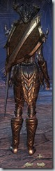eso-wood-elf-dragonknight-veteran-armor-4