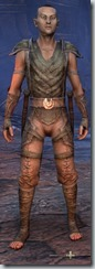 eso-wood-elf-nightblade-novice-armor-male