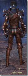 eso-wood-elf-nightblade-veteran-armor-male-3
