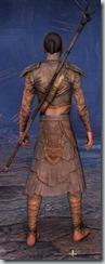 eso-wood-elf-sorcerer-novice-armor-male-3