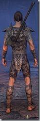 eso-wood-elf-templar-novice-armor-male-3