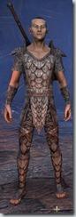 eso-wood-elf-templar-novice-armor-male