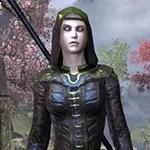 Ancient Elf Shadowspun