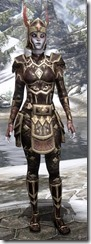 Imperial Brigandine - Female VR3 Superior Front