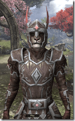 Imperial Brigandine - Male VR1 Normal Close Front