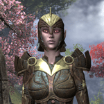 Ancient Elf Brigandine