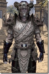 Bosmer Voidsteel - Male VR12 Epic Close Front