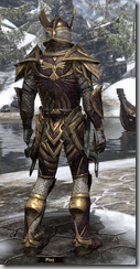 Altmer Calcinium - Male VR1 Superior Back
