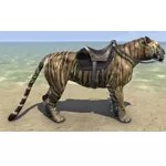 Striped Senche-Tiger