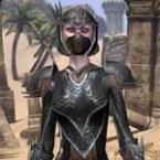 Redguard Brigandine