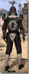 eso-imperial-city-dc-light-male-jerkin-3