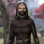 Assassins League Ancestor Silk