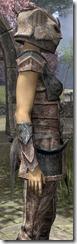 Khajiit Iron - Female Close Side