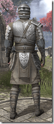 Male-Armor-Mercenary-Steel-lv16-white-back