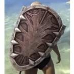 Mercenary Ruby Ash Shield