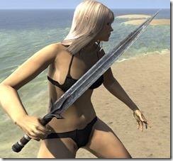 Outlaw Iron Sword 2