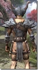 Primal Iron - Male Close Back