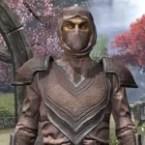 Redguard Hide