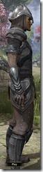 Redguard Steel - Male Side
