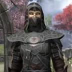 Thieves Guild Ancestor Silk