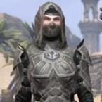 Thieves Guild Shadowhide
