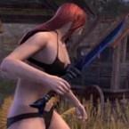 Thieves Guild Voidsteel Dagger
