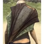 Ancient Elf Birch Shield