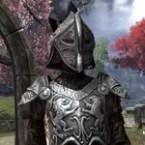 Daggerfall Covenant Rubedo Leather