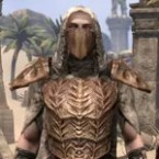 Ashlander Kagesh Tribe Armor