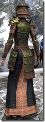Battlemage Tribune Armor Dyed Back
