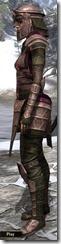 Centurion Dress Armor Dyed Side